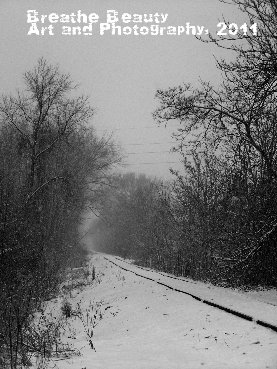 Smoky Railroad Track by Philway
